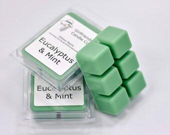 Eucalyptus & Mint Scented Wax Melt