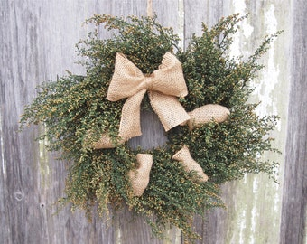 BURLAP and ANNIE Wreath - Small Green Herbal Sweet Annie Wreath - Country Farmhouse Style - Fragrant and Simple