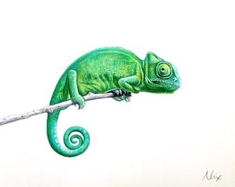Chameleon colored pencil drawing ORIGINAL