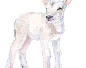 ORIGINAL Lamb watercolor painting