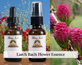 Larch Flower Essence, 1 oz Dropper or Spray for Increased Self-Confidence