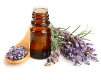 Lavender Essential Oil Kashmir/High Altitude or 40/42 FREE SHIPPING 1/2,1,2,4oz