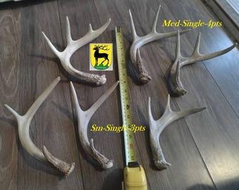 Antler Centerpiece (100% real antlers) Sales!!