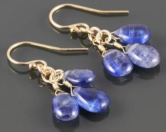 Kyanite Cluster Earrings. Cornflower Blue. Yellow Gold Filled Ear Wires. Genuine Gemstones. 3 Stone Earrings. s17e088