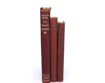 Vintage School Books - Vintage School Decor - Vintage Book Set - Decorative Book Set - Antique School Books - Reading Writing Arithmetic