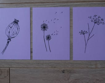 Dried flowers Cards