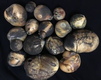 SUPER BLOOD BLUE Moon Herbs ~ Gathered during Lunar Eclipse by High Priestess!
