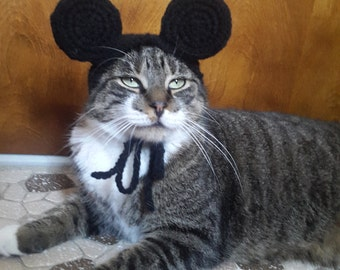Boy Mouse Ears Cat Hat, Knit Hat for Cat, cat costume, halloween