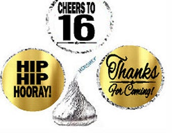 17th Birthday Anniversary Hooray Thanks For Coming Stickers / Labels for  Hershey's Kisses Party Favors Decorations - 216pk