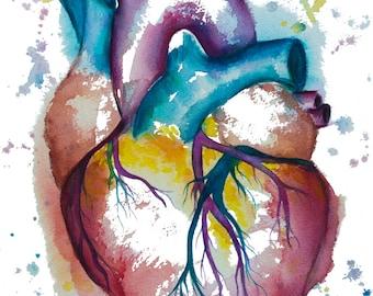 Pintura acuarela--imprimir acuarela, corazón corazón de impresión, arte cardiaca, ciencia arte, Ilustración de la anatomía, anatomía de la cardiología
