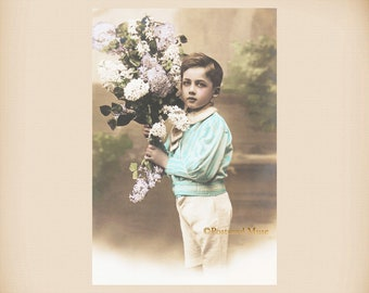 Boy With Lilac New 4x6 Vintage Postcard Image Photo Print CE21