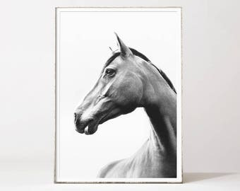 Horse print, horse poster, black and white horse, horse photo, horse prints, printable horse, scandinavian prints, scandinavian wall art