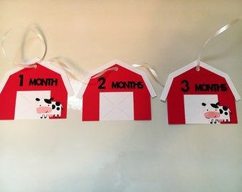 Farm Barn Theme First Birthday Picture Banner Holder