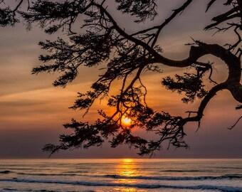 Photo Art - Beach Sunset Photography - Oregon Coast
