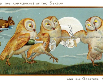 Holiday Card - Owls Dance with Champagne - Frog Under Full Moon
