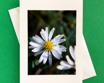 Handmade note card - greeting card - any occasion card - thank you card - blank card
