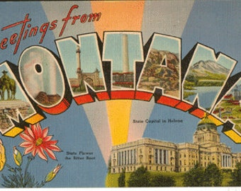 Linen postcard, Greetings from Montana, State Capitol, State Flower, Large Letter