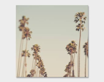 large palm tree wall art, canvas wrap, blue green home decor, Los Angeles photography, California Dreaming, bedroom decor, nursery art