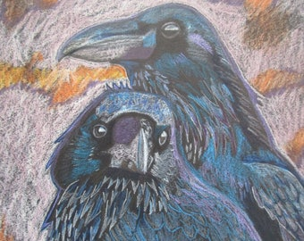 Crows and Ravens black beauties of the night original colored pencil drawing