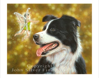 Border Collie Portrait, Faerie tails. Limited Edition Print. Personally signed and numbered by Award Winning Artist JOHN SILVER. jsfa081