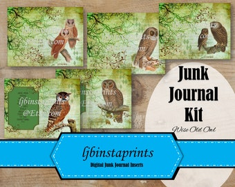 Owl Junk Journal Kit, Vntage Junk Journal Kit, Birds Junk Journal Kit, Junk Journal Supply, Instant Download