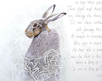 I Spied a Hare by Ann Richmond - A Signed, Ltd. Ed. Giclee Print.