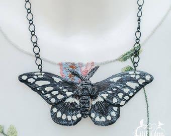 Papilio cresphontes Kette - Schwarz