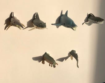 Set of 6 Shark Magnets