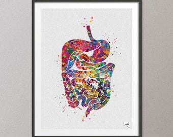 Digestive System Watercolor Print Human Organs  Gastrointestinal Tract Clinic Decor Art Student Graduaiton Gift Medical Doctor Art Gift-1048