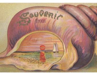 Vintage Postcard from Dacoma Oklahoma 1910