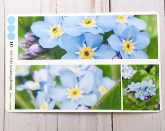 forget me not planner stickers | blue forget me not photo stickers | full box planner stickers |  | vinyl matte stickers | spring flowers