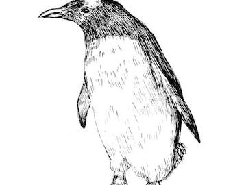 Penguin - Art Print