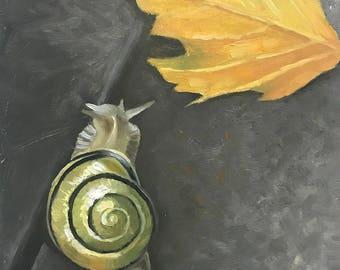 Non-Native; Cepaea nemoralis (grove snail)