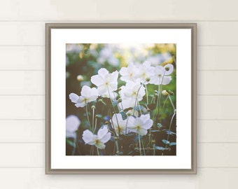 White flower photo, square floral wall art, meadow fields, wildflowers field, green, blue, spring, oversized wall art, large photo, gift