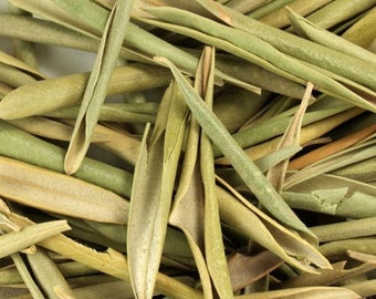 Olive Leaf - Certified Organic