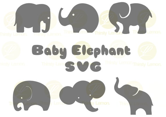 Cute Baby Elephant Svg Bundle Elephant Svg Baby Elephant