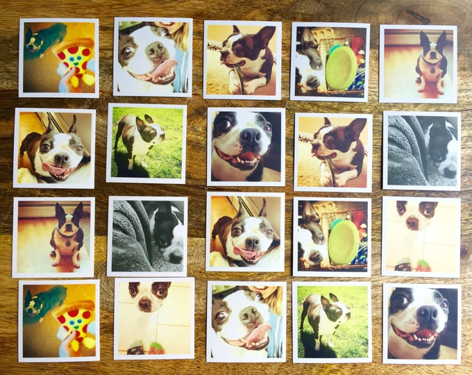 21 pc Bandit Memory Game, Memory Game, happy dog, kids game, dog match game, boston terrier, dog memory game, Sidesandwich, card game