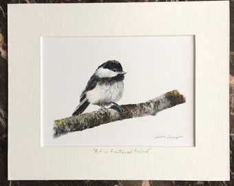Chickadee original bird painting, songbird art, cute bird art, bird on a birch branch, realism bird art, original bird art, garden bird art
