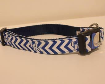 University of Kentucky Chevron Dog Collar