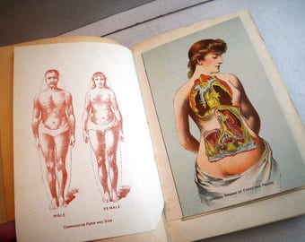 1905 Beautiful Womanhood Medical Encyclopedia Book for Women Illustrated