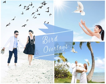 Doves & Birds PNG Overlays, Photoshop Overlays, Wedding Overlays, Photo Overlays, Birds, Doves Overlays