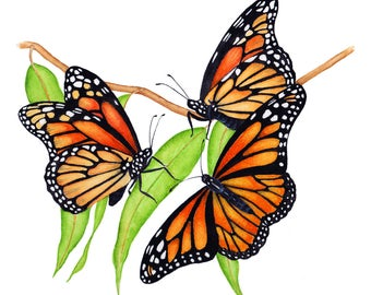 Monarch Butterflies with Eucalyptus Print