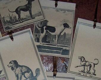 Dog, Spaniel,Greyhound Victorian Image Handmade Kraft Gift Tags Set 16