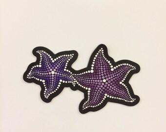 Seastar Magnet