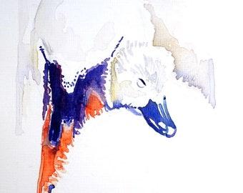 Zwaan met jong. Zwaan. Originele aquarel.