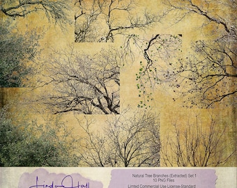 Natural Branches Set 1