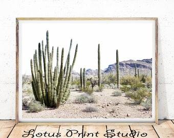 Desert Print, Cacti Desert Landscape, Cactus Desert Photography, Modern Minimalist, Large Printable Poster, Instant Download, #355