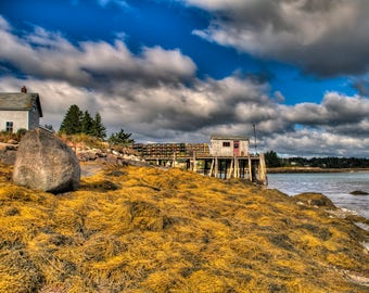 Yellow Tide - Swan's Island, Maine - Fine Art - Wall Art - Inquire about Size & Frame Options