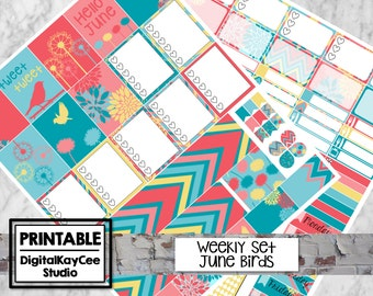 PRINTABLE June Birds / Weekly Set / Erin Condren Life Planner / Vertical / Planner Stickers / MAMBI