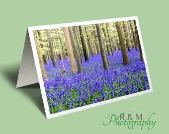 bluebell greeting card, bluebells photo blank greeting card, bluebells from original photograph by R&M Photography